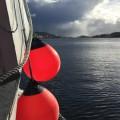 heavy-duty-buoy-boei-stootwillen-fender-bagger-offshore-visserij-polyform-A-serie-boot