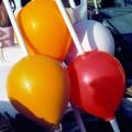 pick-up-buoy-markeringsboei-eva-bolfender-ballfender-polyform-cc-rod-visserij-fishery